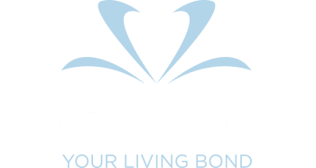 Heart In Diamond | Cremation Diamonds & Hair to Diamonds