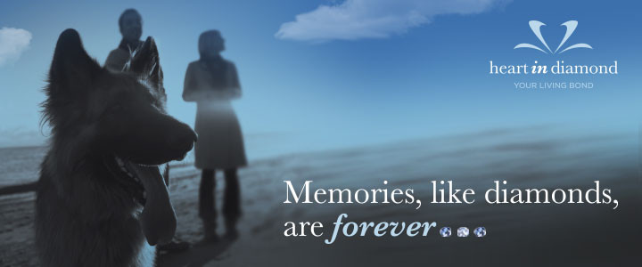 Memorialize Your Pet Forever