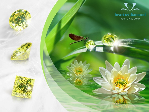 3 Types of green diamonds, image of nature and flowers on a green background