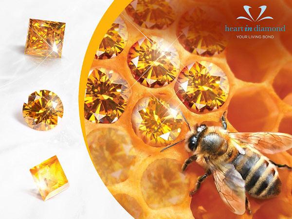 3 Types of orange diamonds, an orange honey bee an orange background