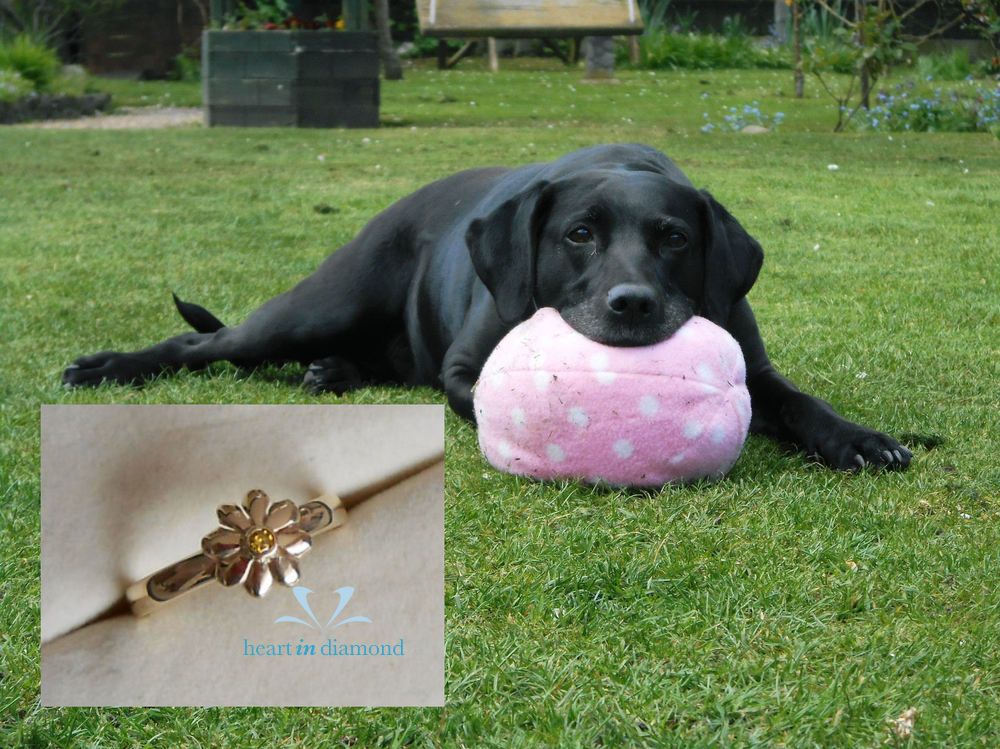 cremation jewelry from pet's ashes