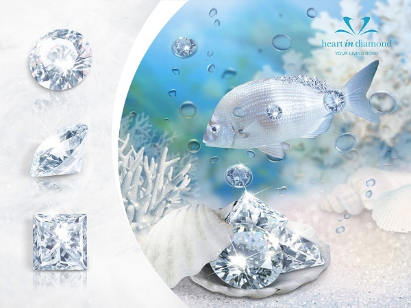 3 Types of white diamonds, a sparkling white fish in the ocean on a blue and white background